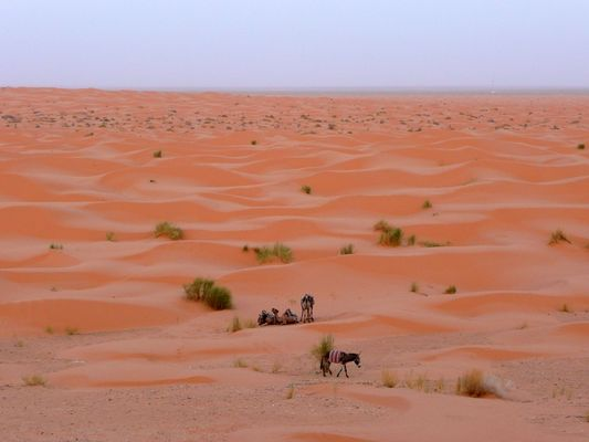 Sahara Ksar Ghilane