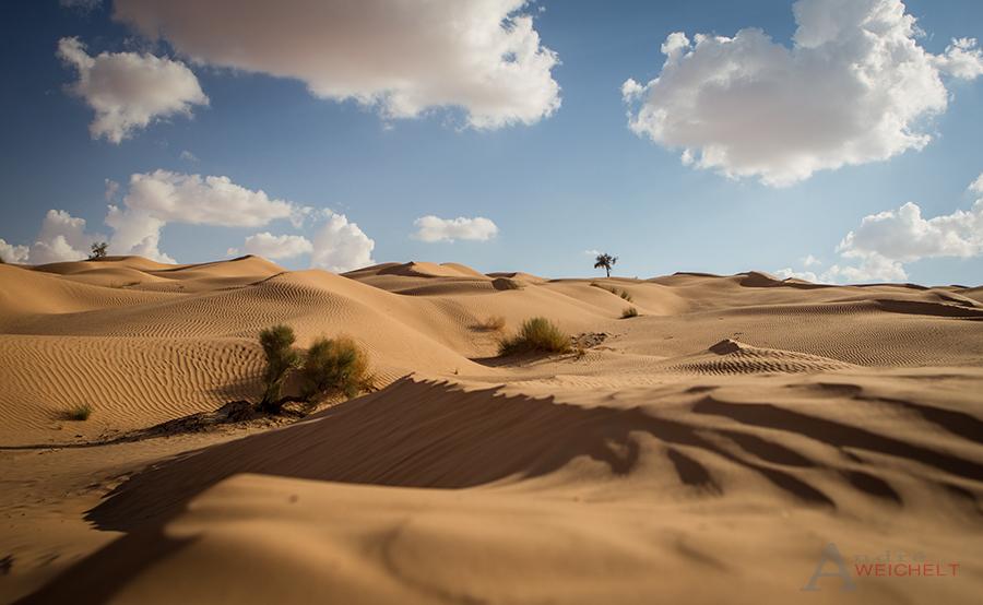 Sahara of Thunesia...