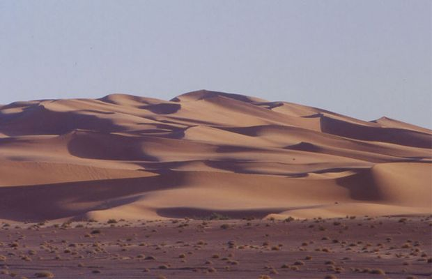 Sahara Regane