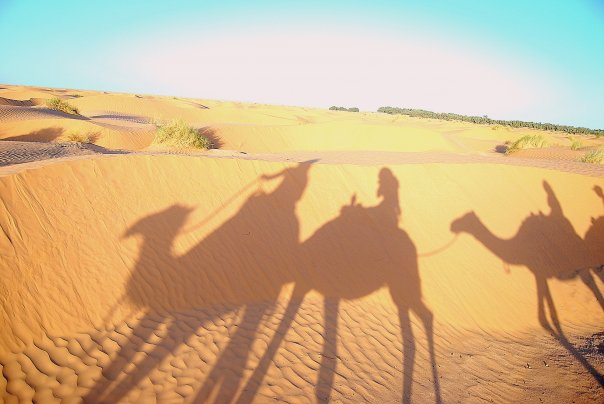 Sahara Tunisien ...