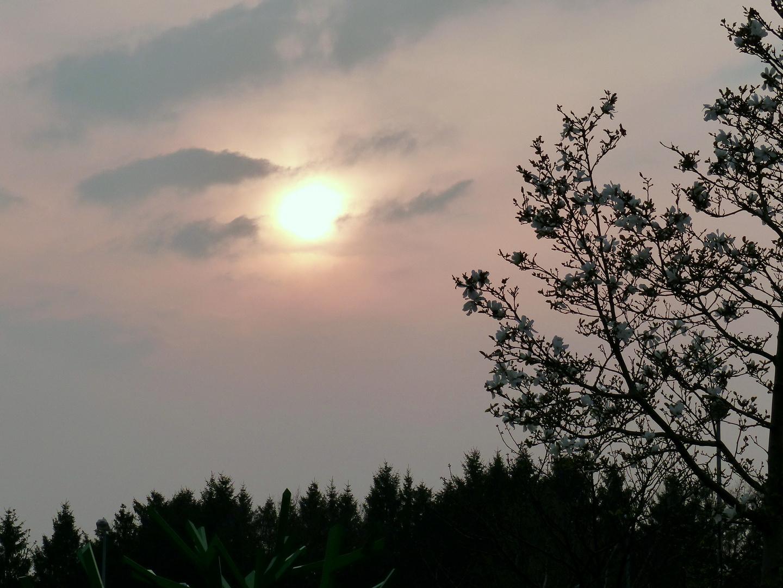 Saharastaub in der Luft ,für einen Moment kommt die Sonne