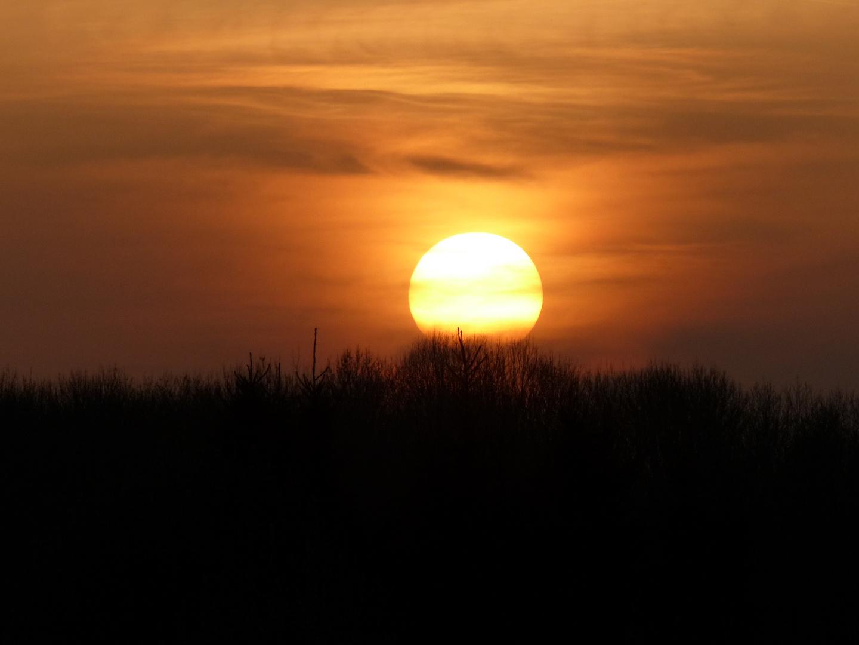 Saharastaub küsst die Sonne