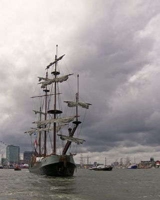 Sail Amsterdam (2)