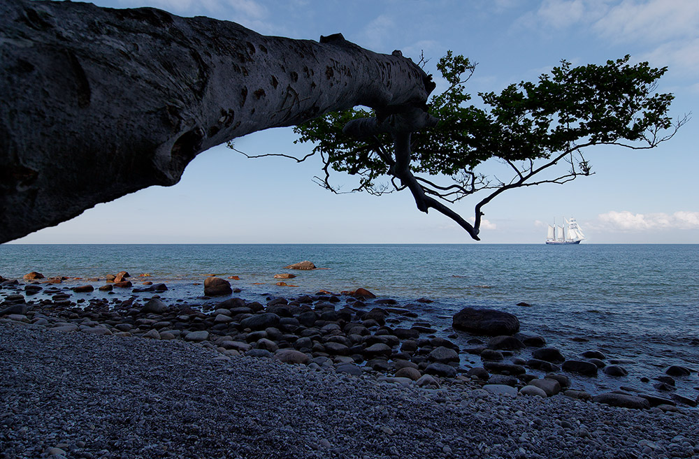 sail away ...