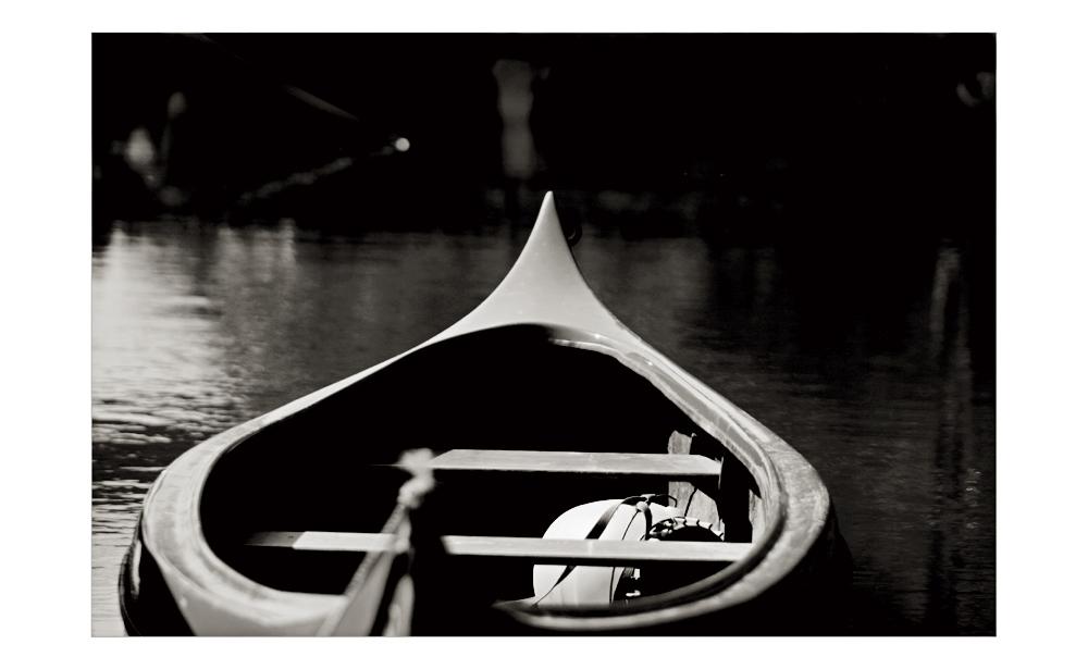 ~~~ sail away  .....