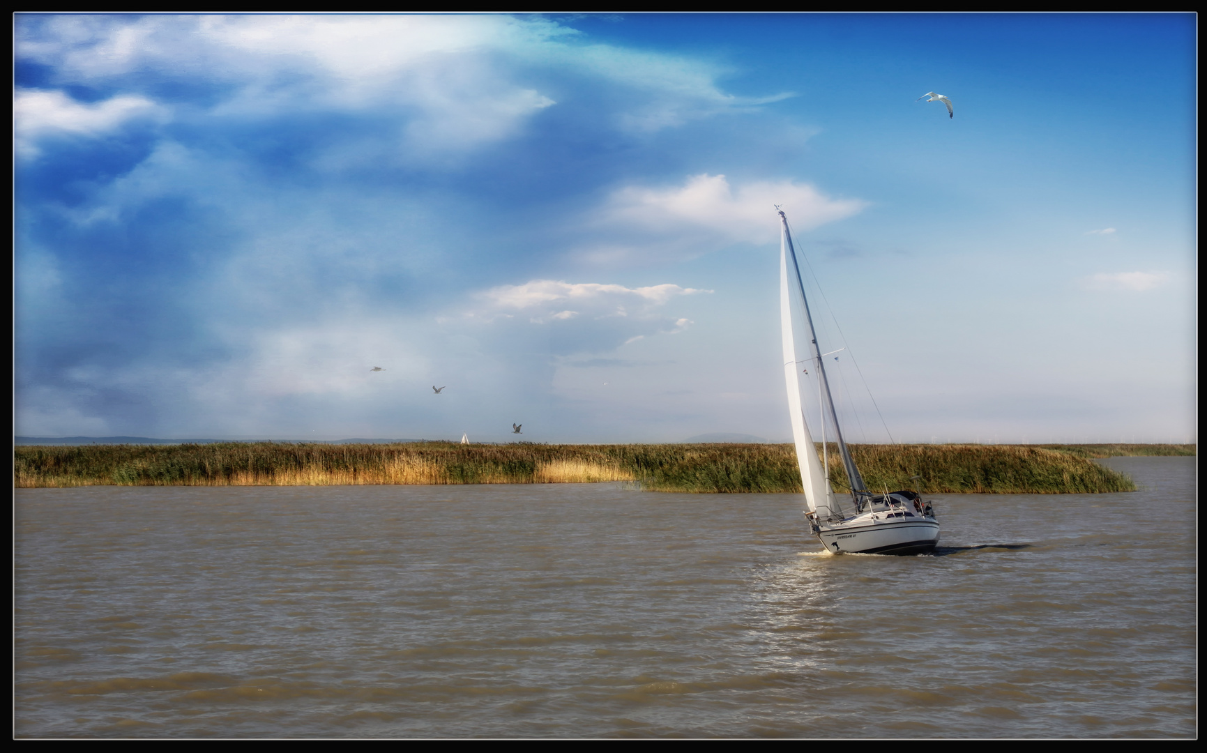 Sail away .....
