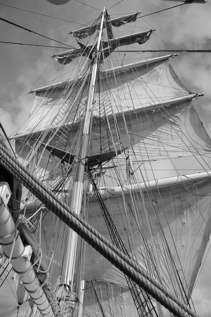 Sail away VIII