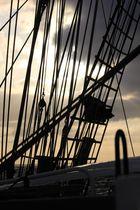 Sail away XII