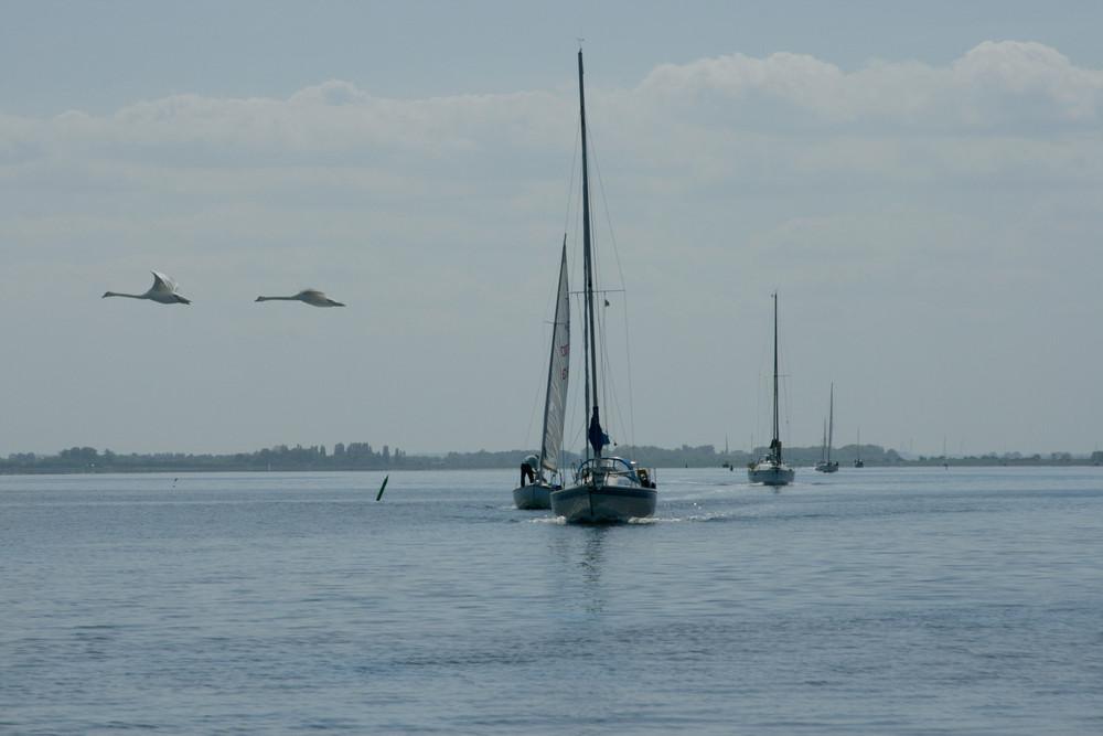 sailing.....