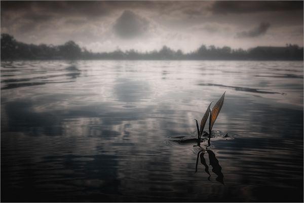 « sailing... »