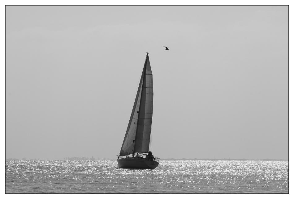....sailing......