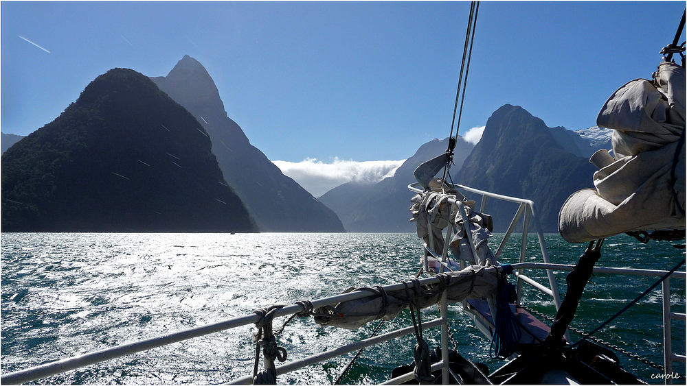 sailing in milford sound