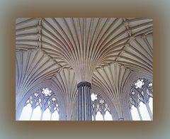 Sala capitolare..cattedrale di Wells..scorcio del soffitto