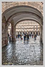 Salamanca brillante