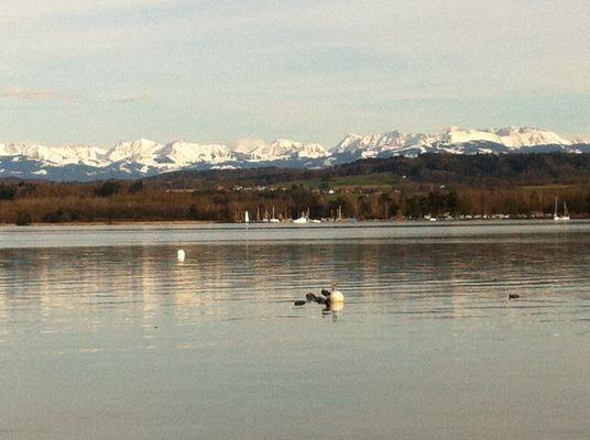 Salavaux, Lac Morat