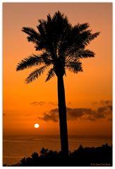 Salida del sol # 2