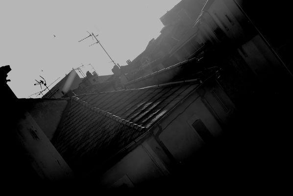 SALON DE PROVENCE 2010