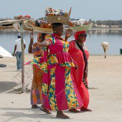 salted ladys