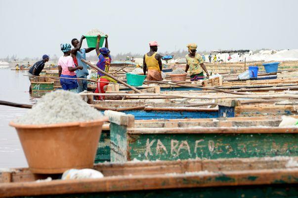 Salting Mining at Lac Rose, Senegal