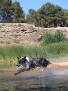 salto en el agua