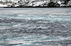 Saltstraumen -stärkster Gezeitenstrom der Welt-
