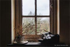 Salve Mater ..... Fensterblick