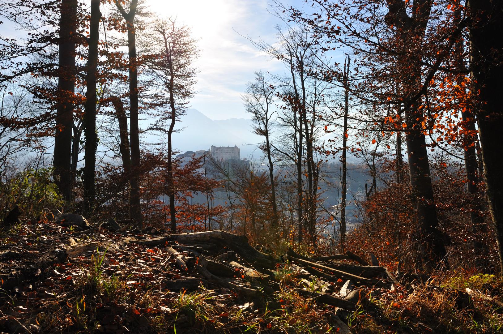 Salzburg aus Kapuzinerberg Herbst