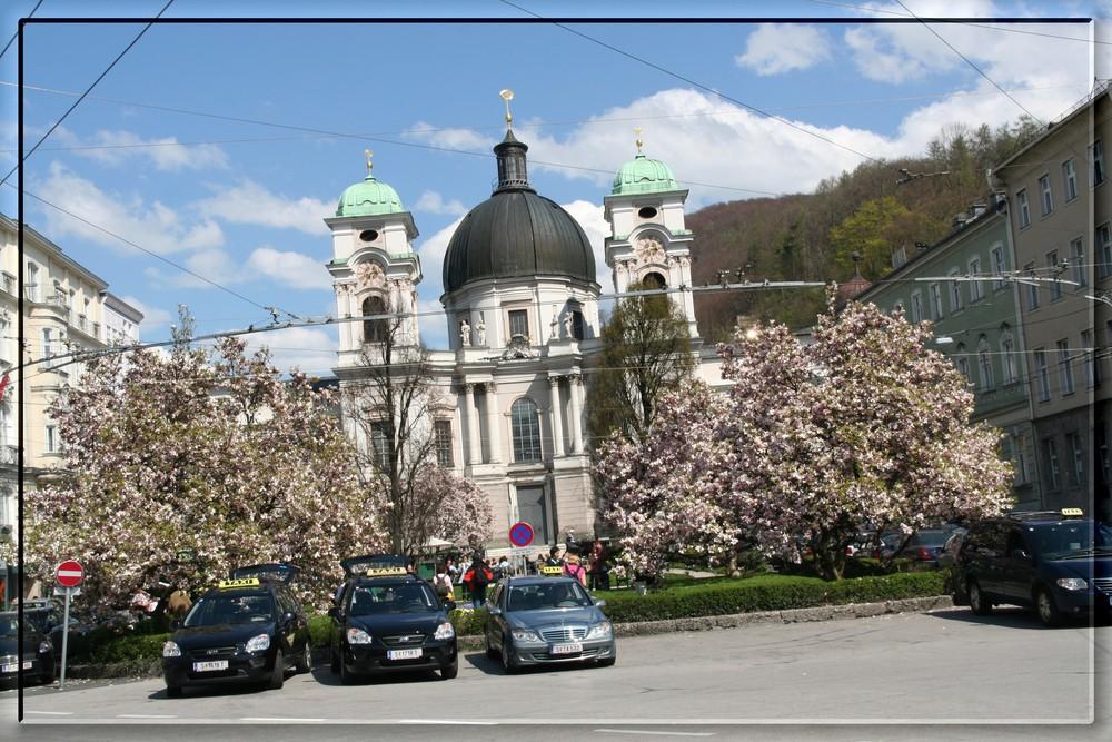 Salzburger Taxi 04/2008