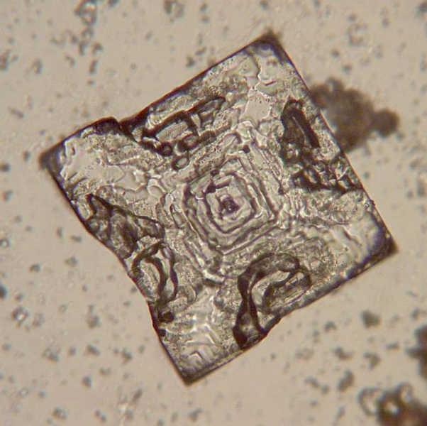 Salzkristall unter dem Mikroskop