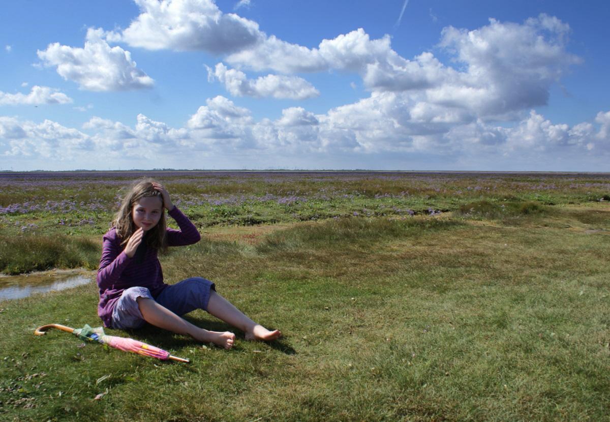 Salzwiesen auf Norderney