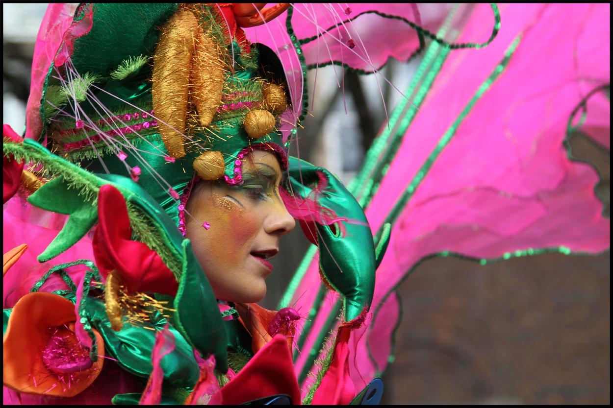 Samba in Bremen I