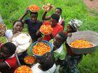 Sambia Markt