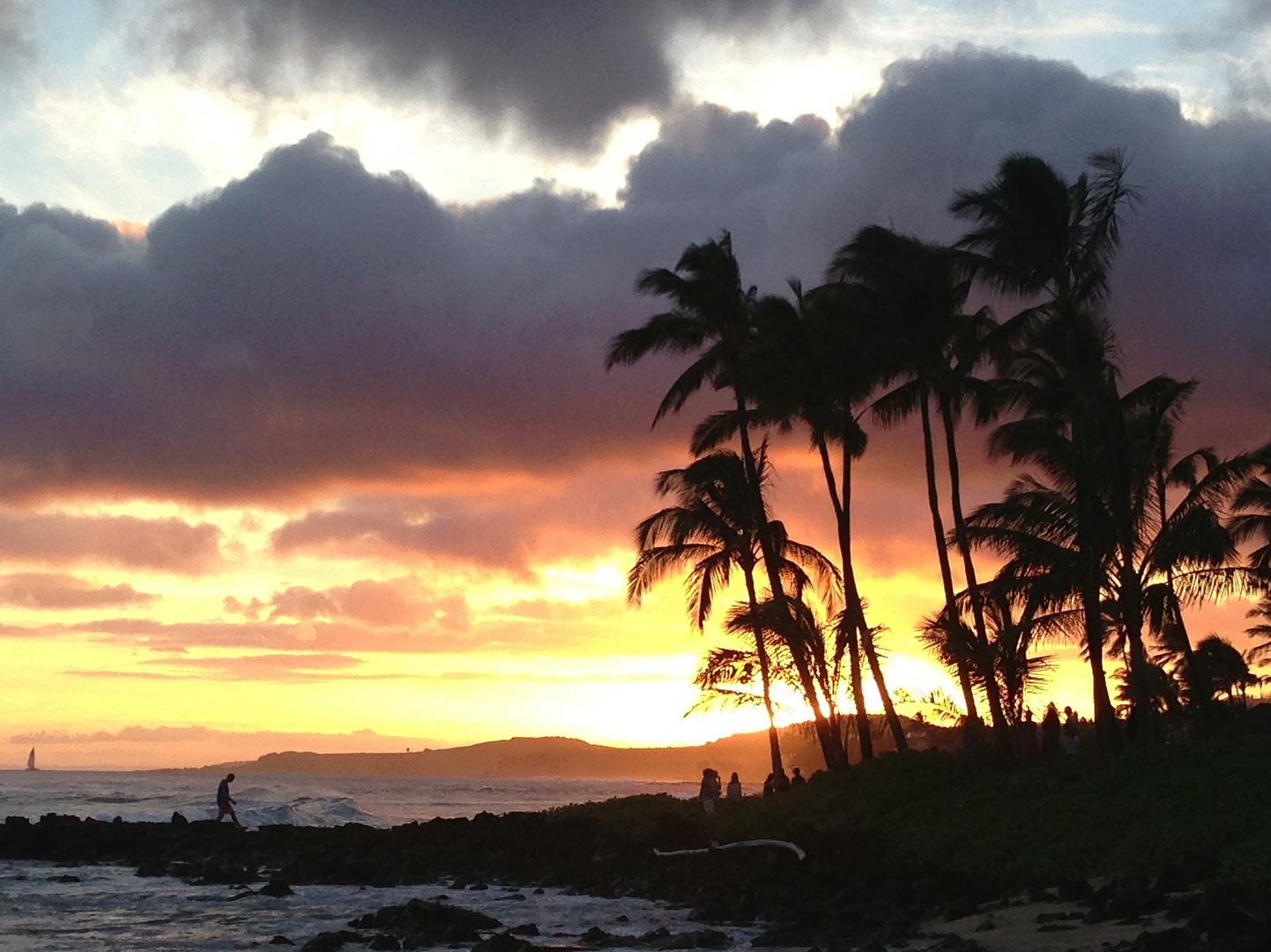 Same sunset as every night