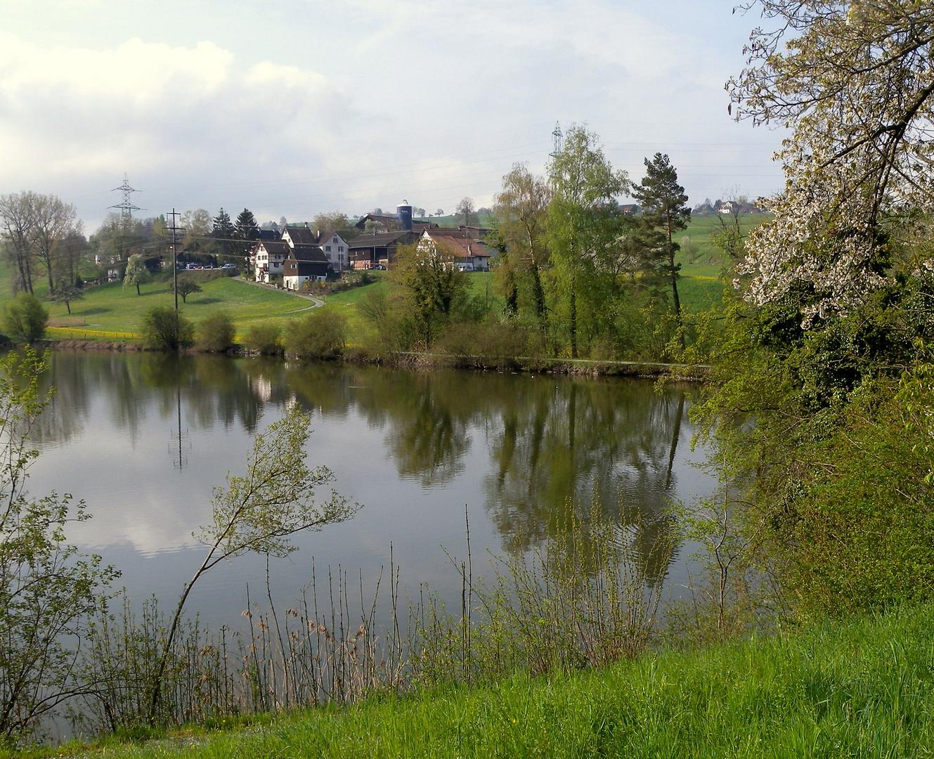 Samstagern im Frühling / en la primavera / au printemps..04