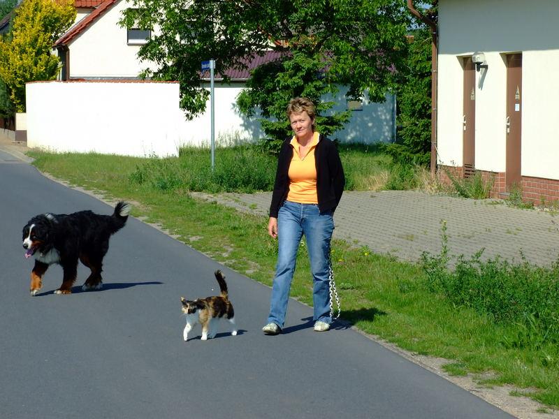 Samstagmorgen, Spaziergang im Gleichschritt -