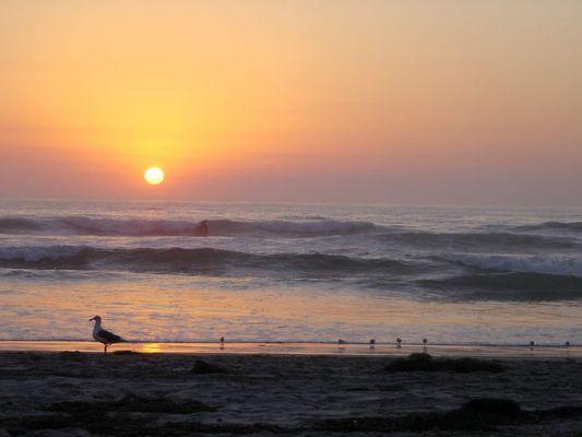 san diego mission beach