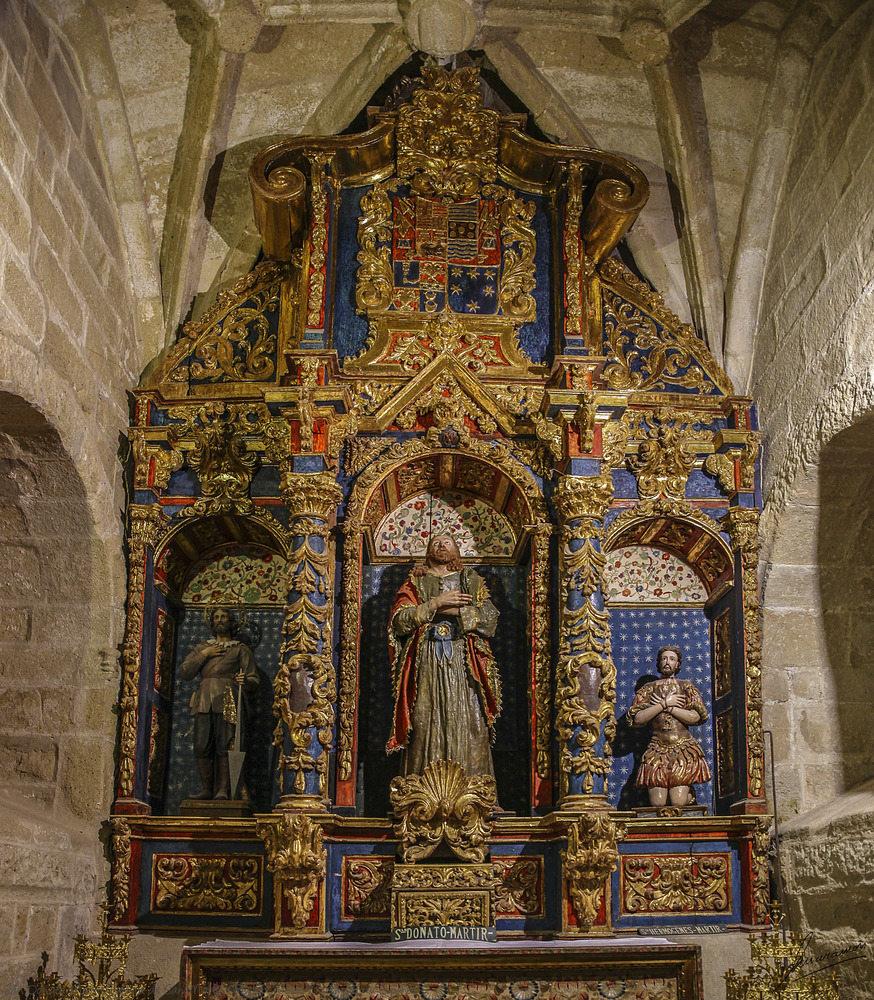 San Donato Martir Iglesia de San Martín (Trujillo Cáceres Extremadura España)