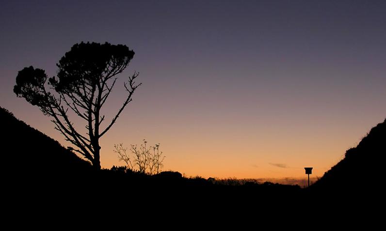 """""""San Fran Sun Set"""""""