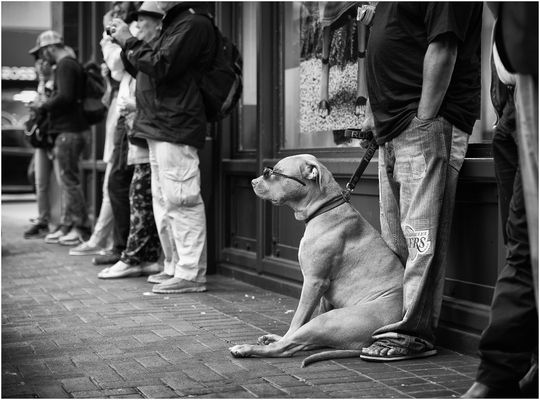 San Francisco, Market Street / 2