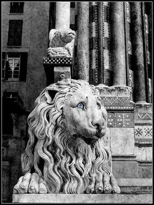 San Lorenzo's Lion