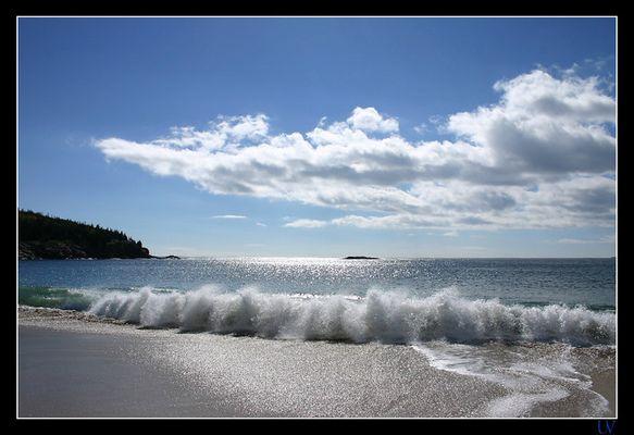 Sand Beach - Acadia Nationalpark