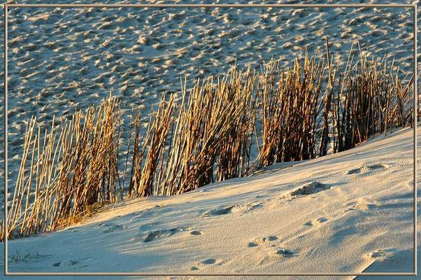 Sand im Abendlicht