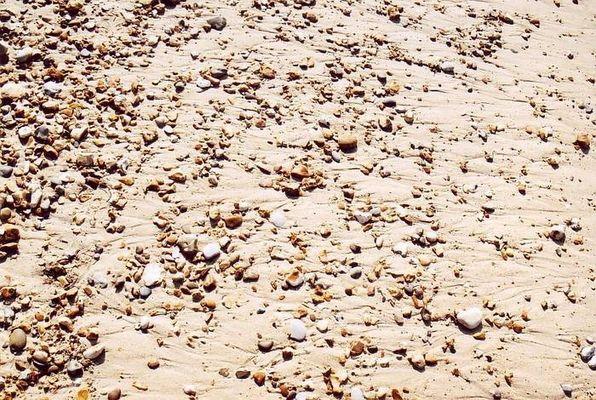 Sand Muscheln und Steine