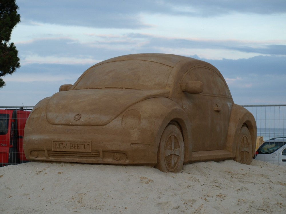 Sand New Beetle