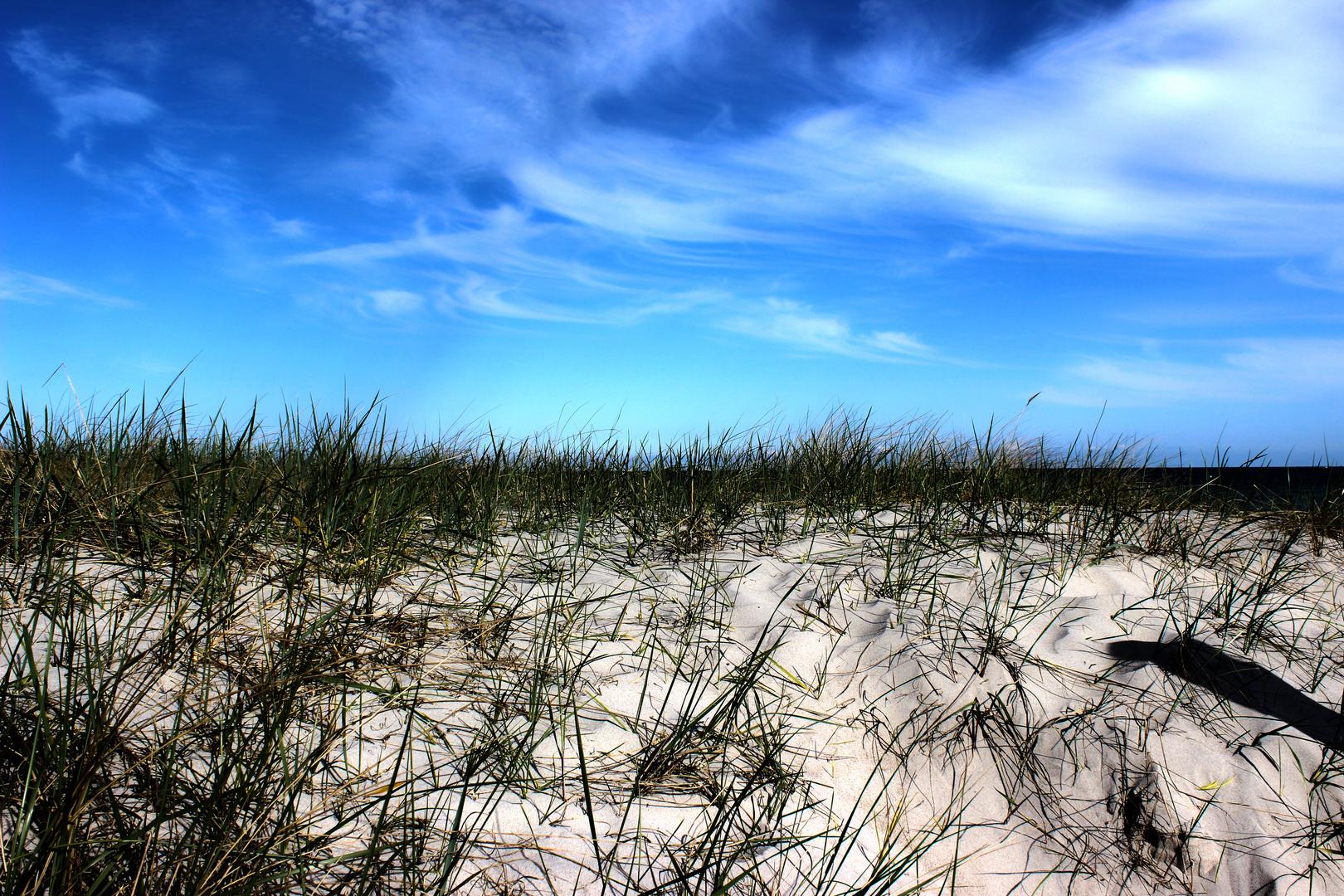 Sand und Gräser