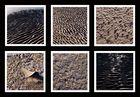 Sand, Wasser, Eis, Wind