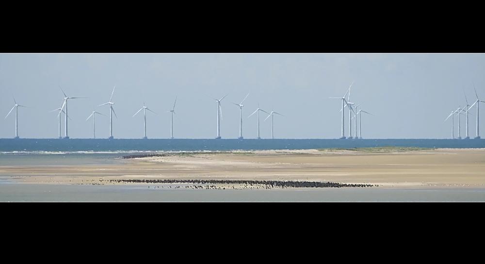 Sandbank vor Dänemark