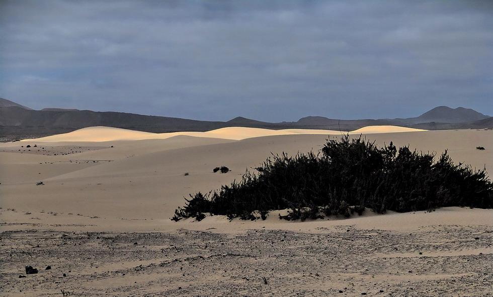 Sanddünen bei Coralejo