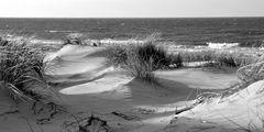 Sanddünen Hiddensee