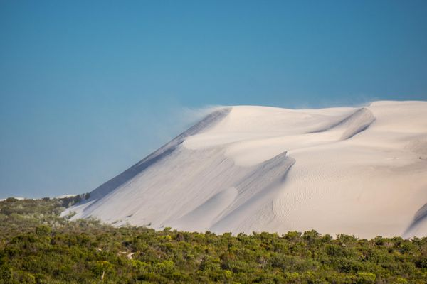 Sanddünen im Nambung Nationalpark